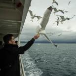 Pescarusii ne asteptau